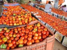 किसानों के साथ-साथ सोलन शहर की आर्थिकी टमाटर के सीजन पर ही निर्भर करती है