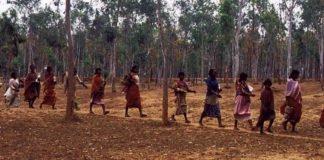 कोरोना वायरस के बढ़ते प्रकोप को देखते हुए आदिवासी समुदाय की सहायता हेतु TRIFED ने की कई पहल - Panchayat Times